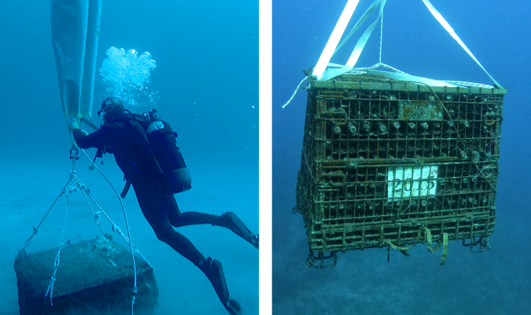 Gaia Wine-Thalassitis Submerged Volcano DIve Center